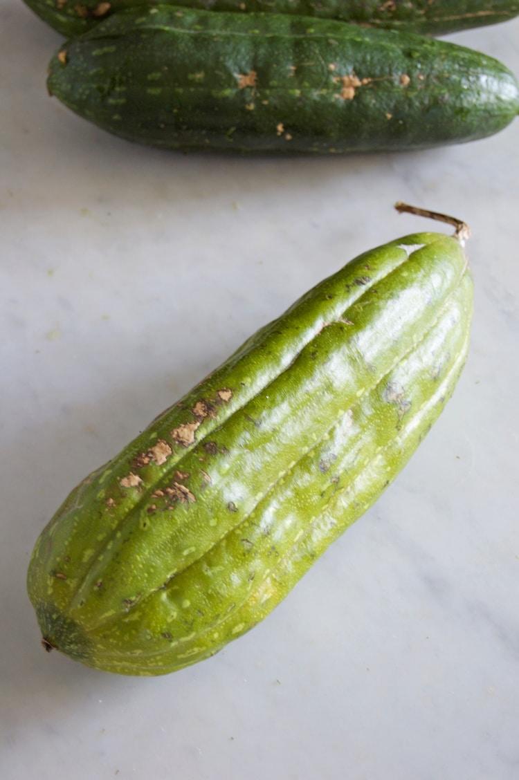 گیاه لوفا، استحمام و 6 مزیت آن